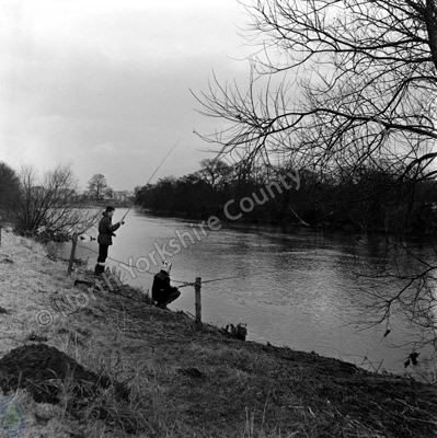 Fishing, River Wharfe
